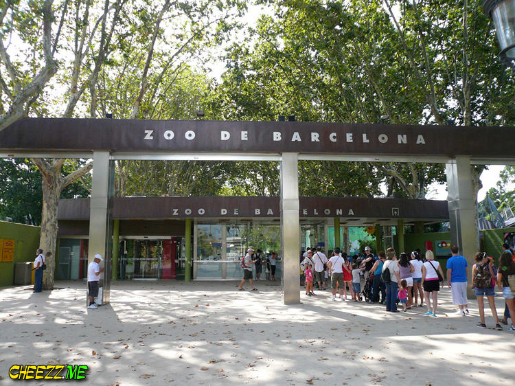 Зоопарк в Барселоне фото