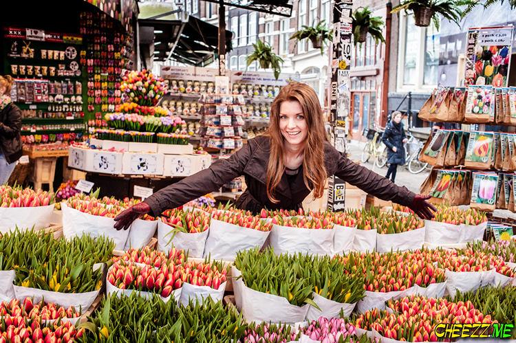 Фотограф в Амстердаме фотосессия достопримечательности