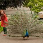 В каких садах Прагу можно гулять
