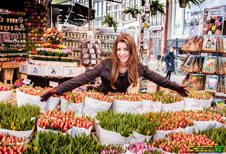 Destination photographer guide in Amsterdam