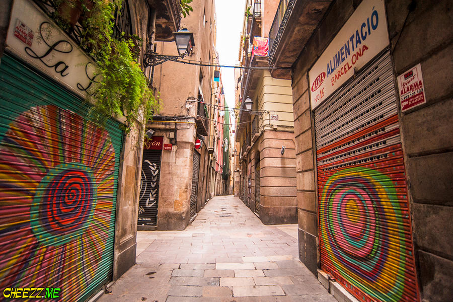 Graffiti in Barcelona one day tour with personal guide photographer